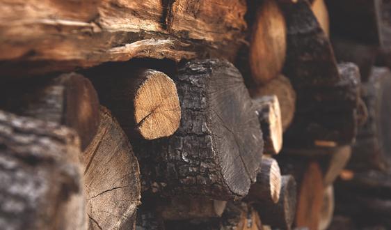 中国耗资1700万元在俄木材加工厂正式建成投产