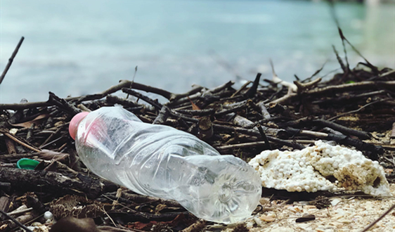 """法国公布""""无塑海滩""""宪章 禁海滩上乱扔塑料垃圾"""