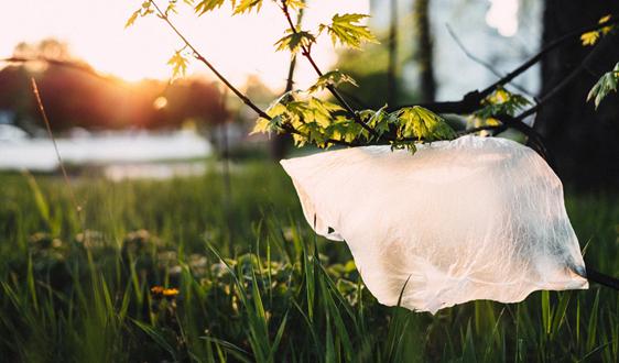 各国纷纷起征塑料税,一税能解千愁?