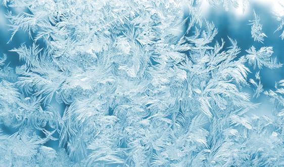 """冷冻干燥技术发展 冻干食品不再是宇航员""""专属"""""""